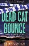 deadcatbounce